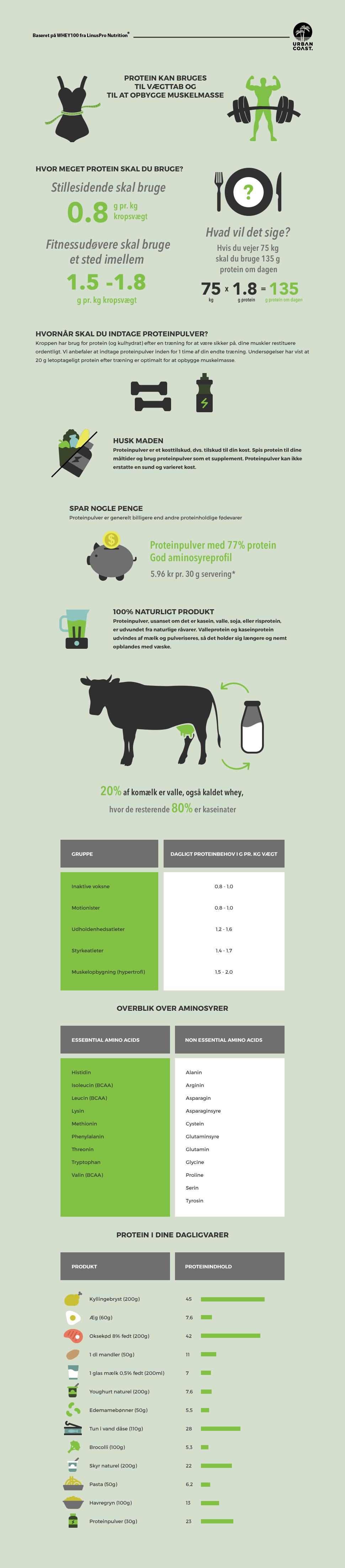 Proteinpulver Infografik UrbanCoast.dk